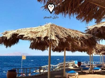 فنادق سهل حشيش – اقتراحات الفنادق في سهل حشيش