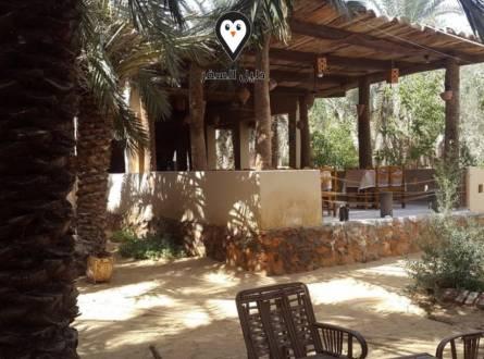 فندق نور الواحة سيوة-البساطة والهدوء ما تبحث عنه لأجازة مميزة