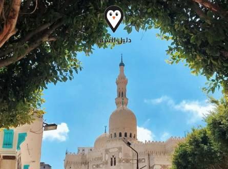 قصر التين بالاسكندرية – أجمل مواقع الإسكندرية التاريخية