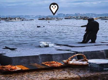شاطئ ميامي فى الاسكندريه – أشهر أماكن الفسح فى مدينة الاسكندريه
