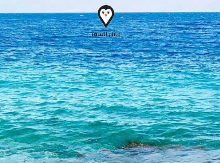فندق توليب شرم الشيخ – استمتع بإقامة 3 نجوم فى شرم الشيخ