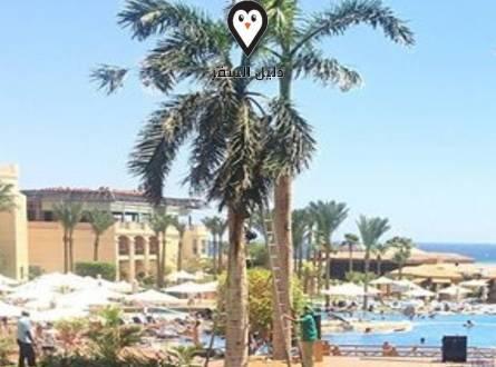 تروبيتل سهل الحشيش الغردقة – فندق الفخامة والمتعة على شاطئ البحر الأحمر