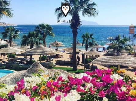 عروض فندق سيرا شرم الشيخ – Savoy Sharm EL Sheikh