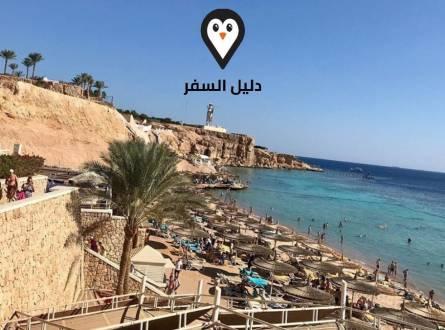 رحلة الجلاس بوت فى شرم الشيخ – متعة مشاهدة الشعاب المرجانية