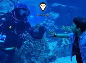 اكواريوم دبي مول.. عندما ترقص حوريات البحر تحت أنظار التماسيح والقروش