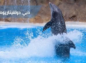 دبي دولفيناريوم أول حوض مائي مكيف في الشرق الاوسط