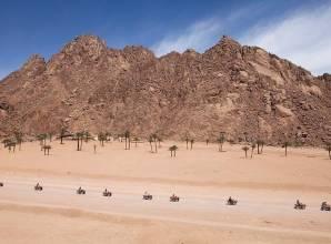 رحلة سفارى فى صحراء شرم الشيخ بالكواد