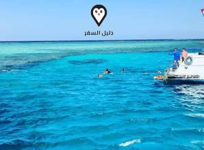 سنوركلينج شرم الشيخ – رحلة فى قلب البحر الأحمر بأفضل سعر